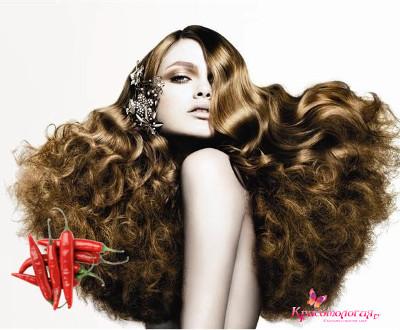 Отзывы о масла брокколи для волос